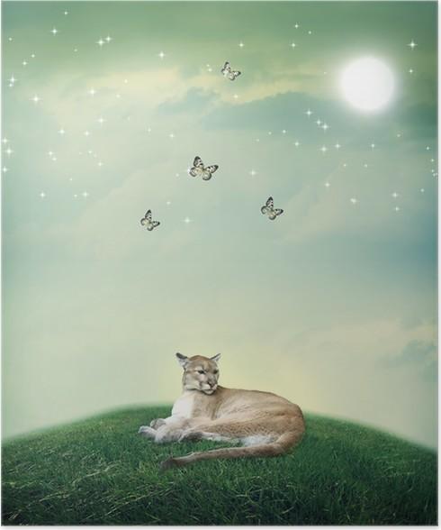 Leben eines Cougar