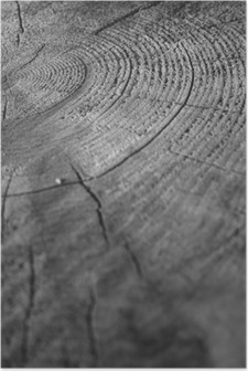 Poster Di legno