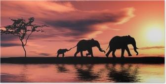 Poster Familie der Elefanten