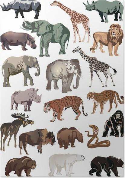 Erfreut Bilder Zur Farbe Von Tieren Bilder - Beispiel Wiederaufnahme ...