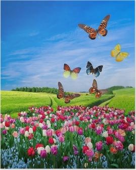 Poster Feld von bunten Blumen und einem Schmetterling Gruppe