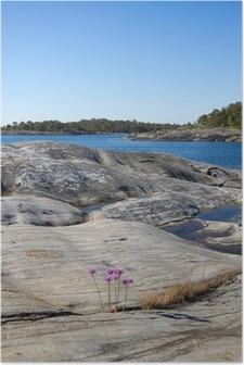 Poster Felsige Landschaft in Stockholmer Schären.