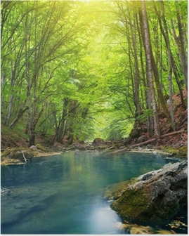 Poster Fluss im Bergwald