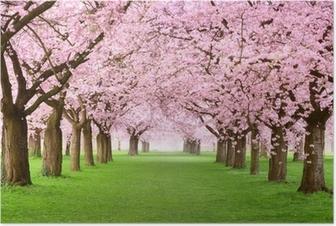 Poster Giardini in fiore