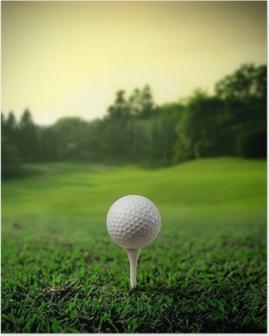 Poster Golf Court