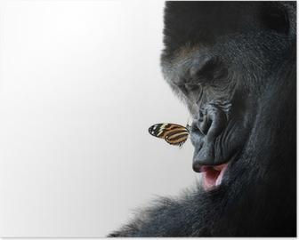 Poster Gorilla und Schmetterling Tier Freundschaft