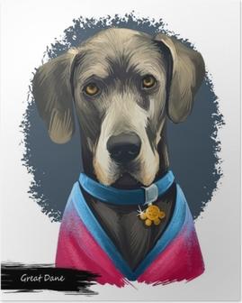 Poster Great dane, deutsche dogge, illustrazione di arte digitale cane mastiff tedesco isolato su sfondo bianco. lavoro di origine germania, cane guardiano. ritratto disegnato a mano dell'animale domestico. disegno grafico di clip art
