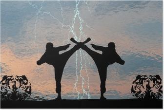 Poster Karatethunder