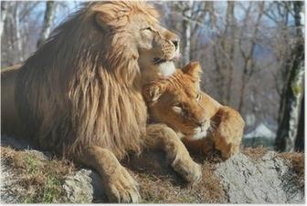 Poster Leone e leonessa