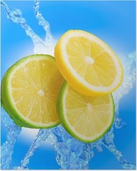 Poster Lime Welt