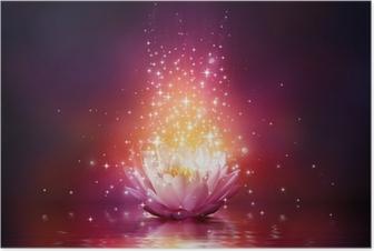 Poster Magie Blume auf dem Wasser