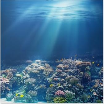 Poster Meer oder Ozean Unterwasser-Korallenriff