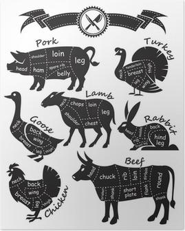Poster Monocromatico guida Schema per il taglio di carne