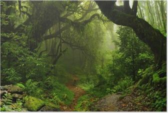 Poster Nepalesischer Dschungel