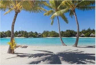 Poster Palme su Uña Spiaggia Bianca in Polinesia francese. Bora Bora