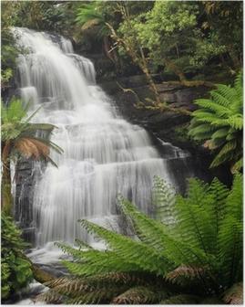 Poster Rainforest Waterfall