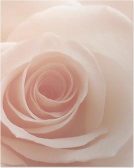 Poster Rosé
