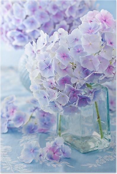 poster sch ne hortensien in einer vase auf einem blauen hintergrund pixers wir leben um. Black Bedroom Furniture Sets. Home Design Ideas