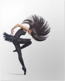 Poster The dancer