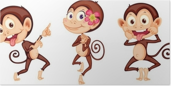 Poster Three Monkeys