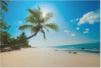 Poster Tropenstrand in der Sonne