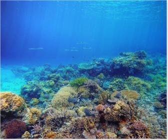 Poster Unterwasser-Szene. Korallenriffe, bunte Fische und sonnigen Himmel shinin