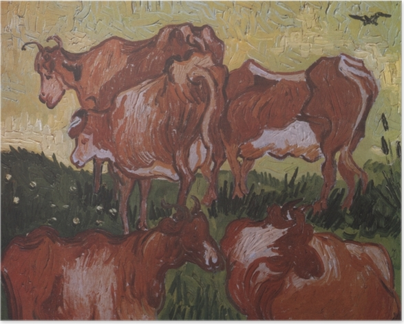 Poster Vincent van Gogh - Kühe - Reproductions