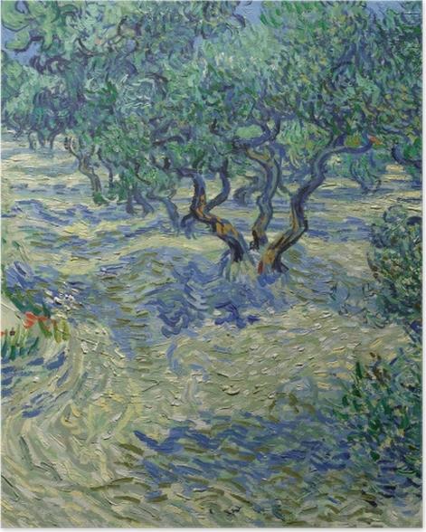 Poster Vincent van Gogh - Olivenhain - Reproductions