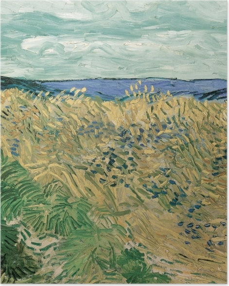Poster Vincent van Gogh - Weizenfeld mit Kornblumen - Reproductions