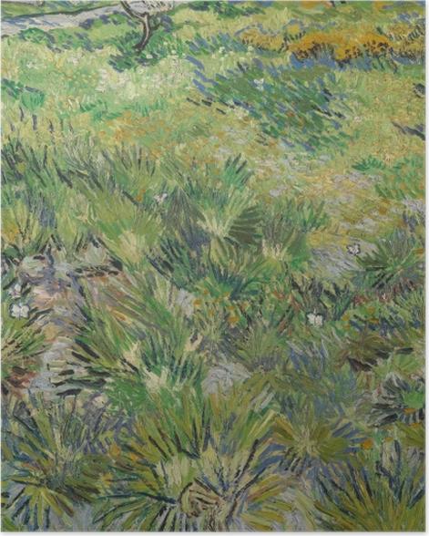 Poster Vincent van Gogh - Wiese im Garten des Hospitals Saint-Paul - Reproductions
