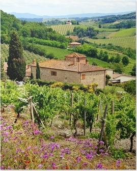 Poster Vista attraverso vigneti con casa in pietra, Toscana, Italia