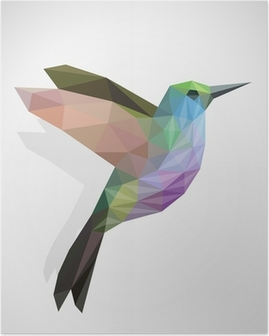 Poster Vogel / bunten Kolibri