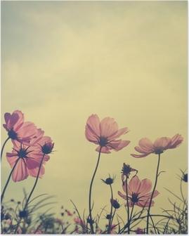 Poster Weinlese-Blumen Cosmos in Sonnenuntergang