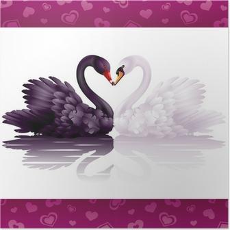 Poster Zwei anmutige Schwäne in der Liebe: schwarz-weißen Herzen