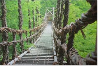 Póster 夏のかずら橋