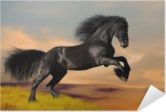 Póster Autoadesivo Black Friesian horse gallops in sunset