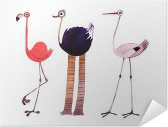 Póster Autoadesivo Pássaro da aguarela definido. Flamingo, avestruz, Cegonha da ilustração pintado à mão