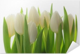 Póster Autoadesivo Tulips