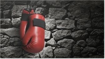 Póster Boxing gloves