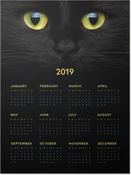 Póster Calendário 2019 - Gato preto -