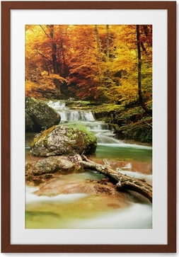 Póster com Moldura Autumn creek woods with yellow trees
