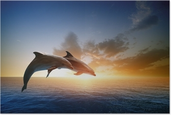 Póster Dolphins jumping
