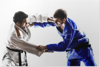 Póster judokas fighters fighting men silhouette