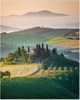 Póster Mattino in Toscana, paesaggio e colline