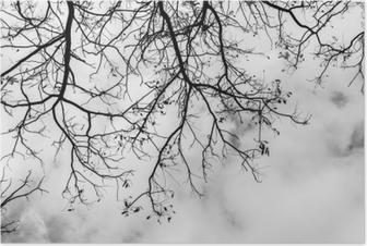 Póster Floresta No Nevoeiro Ilustração Minimalista Desenho