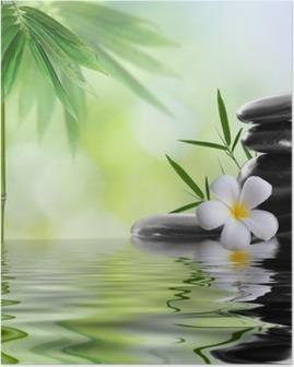 Póster spa stones with frangipani