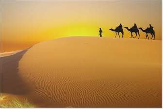Póster Travel with camel