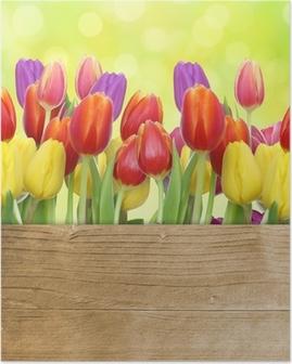 Póster Tulpen mit Holztafel