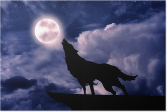 Póster Wolf howling at the full moon