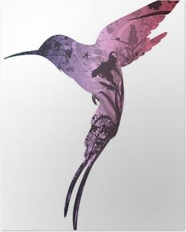 Poster Colibrí